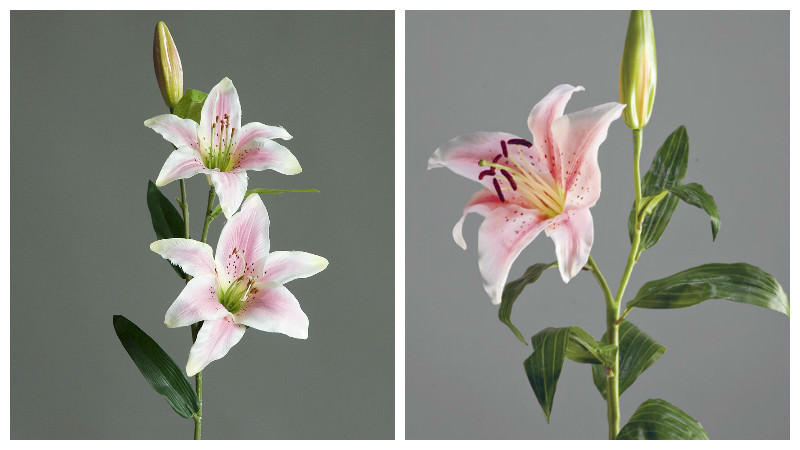 Мастер-класс по фоамирану: веточка лилии, фото пошагово