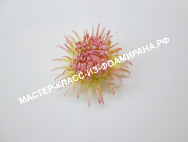 Собираем водяную лилию из фоамирана, пошаговое фото