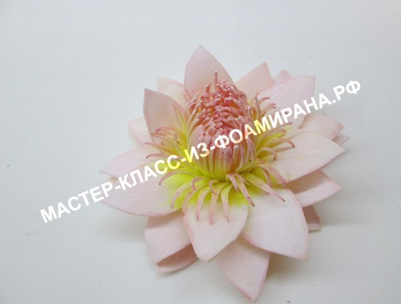 Собираем цветок водяной лилии из фоамирана, пошаговое фото