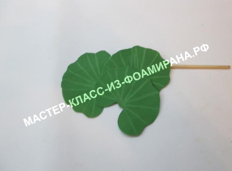 Листья лотоса из фоамирана, фото