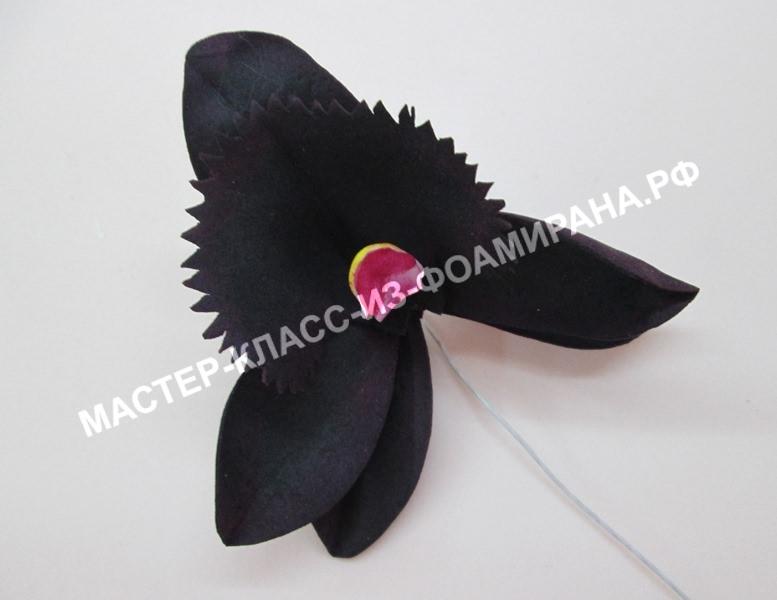 Сборка черной орхидеи из фоамирана, фото