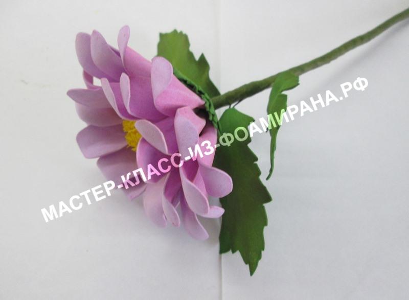 Цветы из фоамирана хризантема, МК с фото