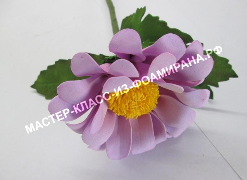 Цветы из фоамирана хризантема, фото