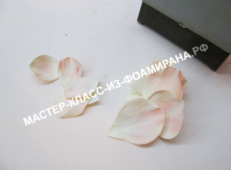 обработка лепестков розы.