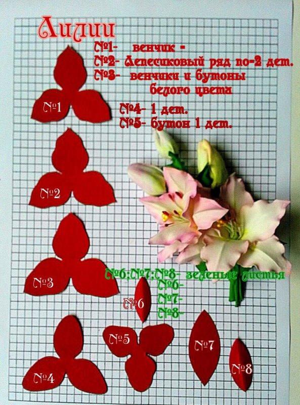 Выкройка для маленькой лилии из фоамирана, фото