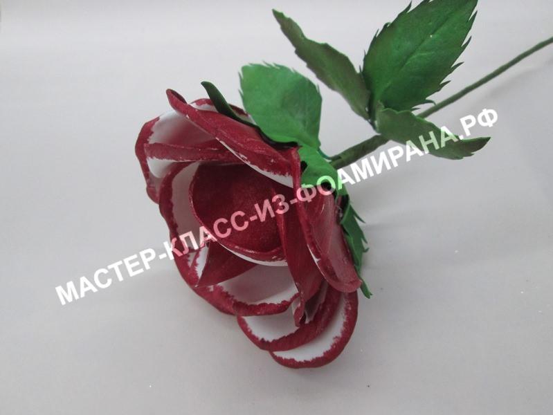 Красная роза на стебле из фоамирана: мастер-класс, пошаговые фото