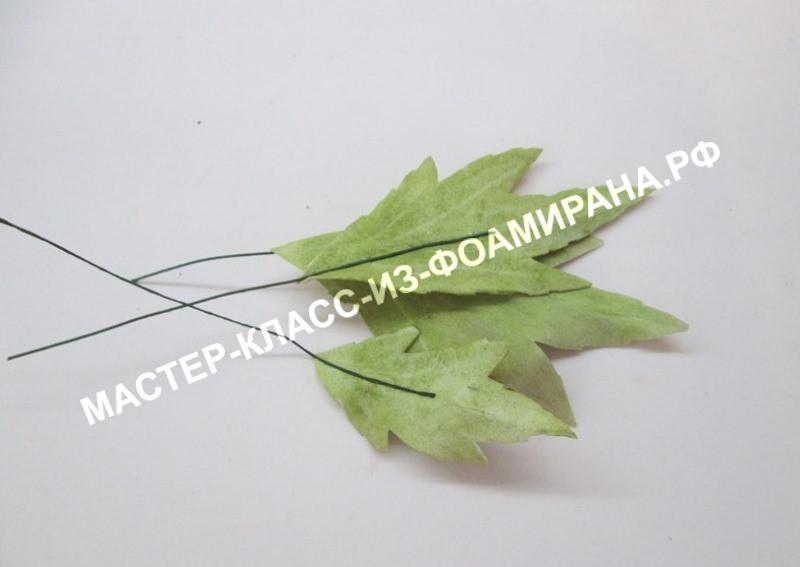 сборка листьев ранункулюса