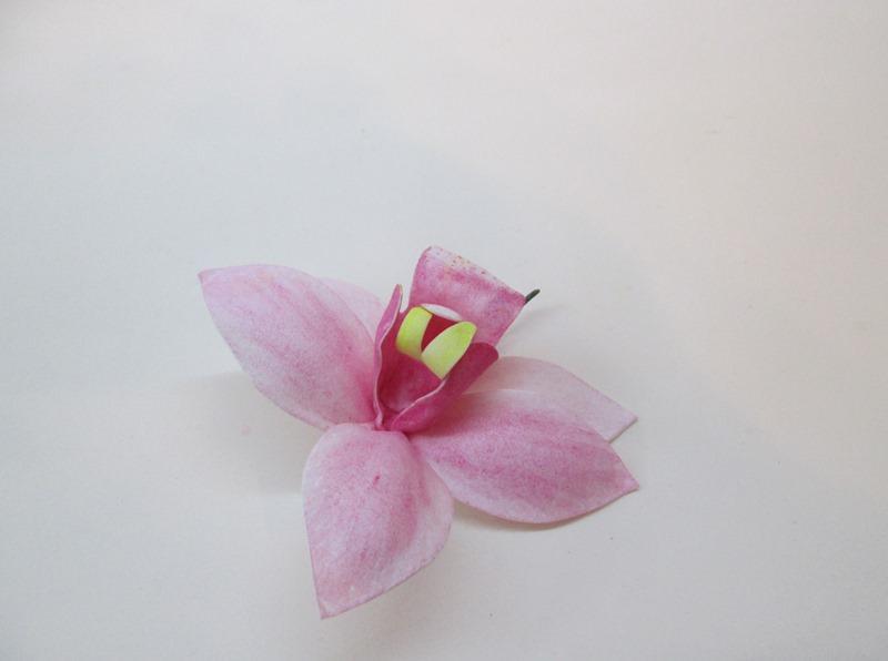 Розовая орхидея цимбидиум, пошаговое фото