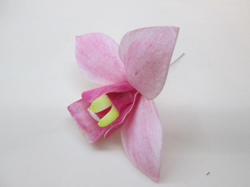 Собираем орхидею цимбидиум, пошаговое фото
