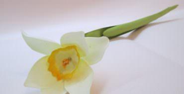 Нарцисс из фоамирана, фото