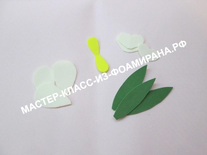 подготовка лепестков и листьев подснежника