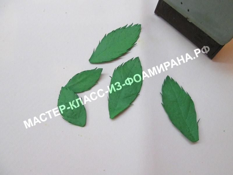 обработка листьев.