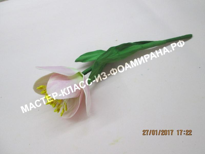 мастер- класс тюльпана из фоамирана