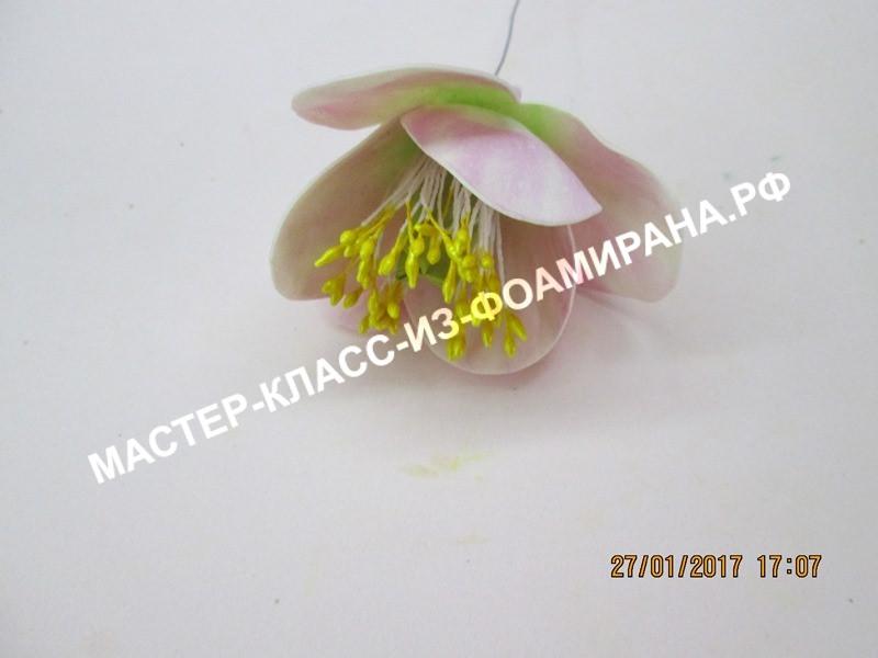 сборка тюльпана
