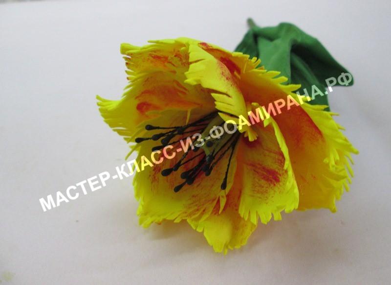 Мастер- класс махровый тюльпан