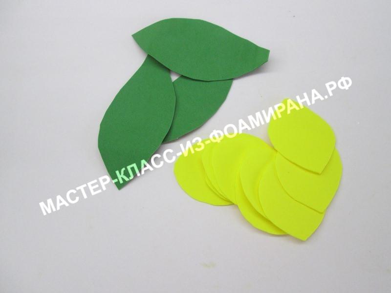 вырезаем лепестки и листья тюльпана