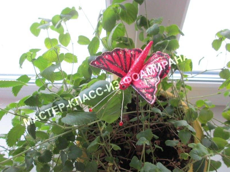 мастер -класс бабочка из фоамирана для декора