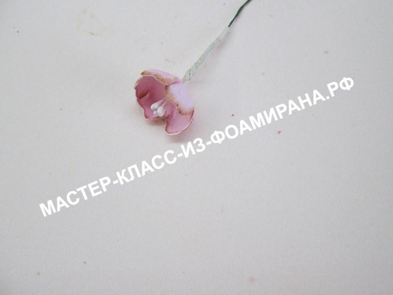 сборка цветов сакуры