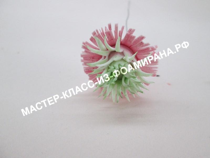 Магнолия из фоамирана: 3 мастер-класса, пошаговое фото