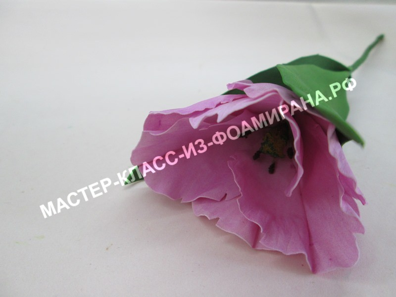 мастер -класс попугайный тюльпан из экстра китайского фоамирана