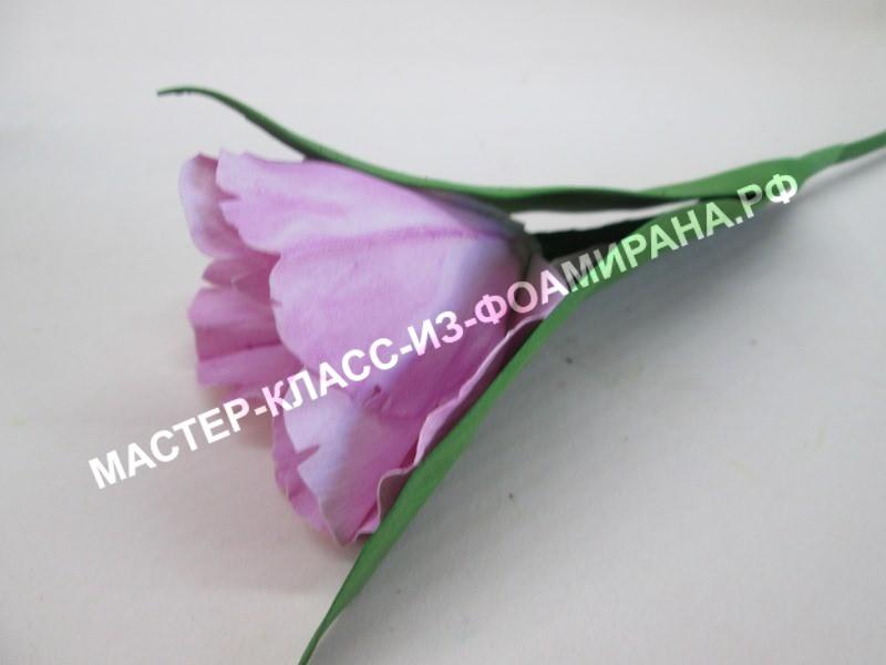 мастер-класс попугайный тюльпан из экстра фоамирана