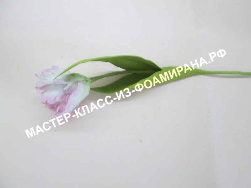 мастер-класс попугайный тюльпан из шелкового фоамирана
