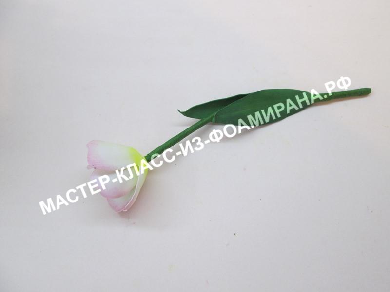 мастер-класс тюльпан из экстра китайского фоамирана