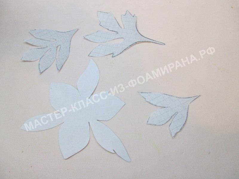 схема листьев и чашелистика