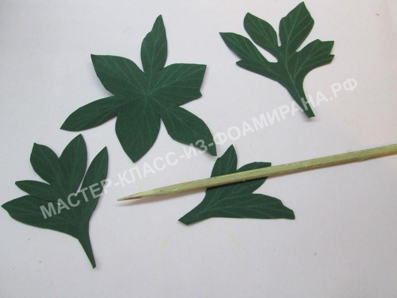 обработка листьев и чашелистика