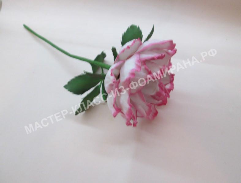 мастер-класс нежная роза из зефирного фоамирана