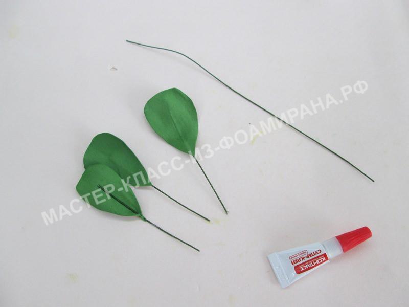 формирование маленьких листьев