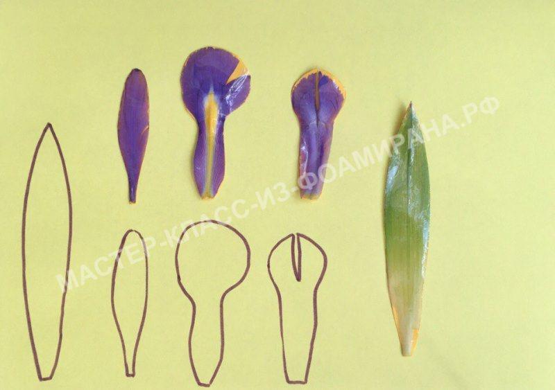Выкройка ириса на основе живого цветка