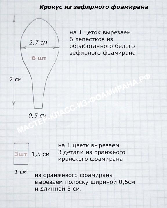 Выкройка крокуса из фоамирана