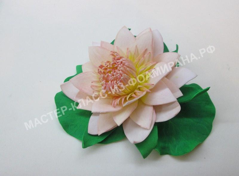 Выкройка лилии из фоамирана (цветок, веточка)