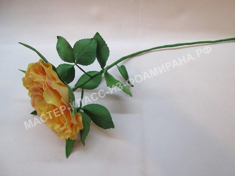 мастер-класс распустившаяся роза из зефирного фоамирана