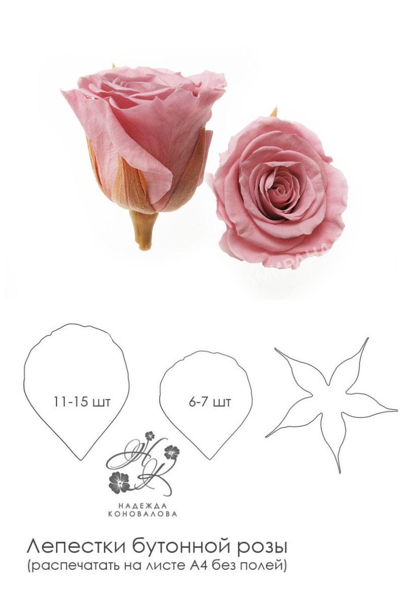 Выкройка бутонной розы