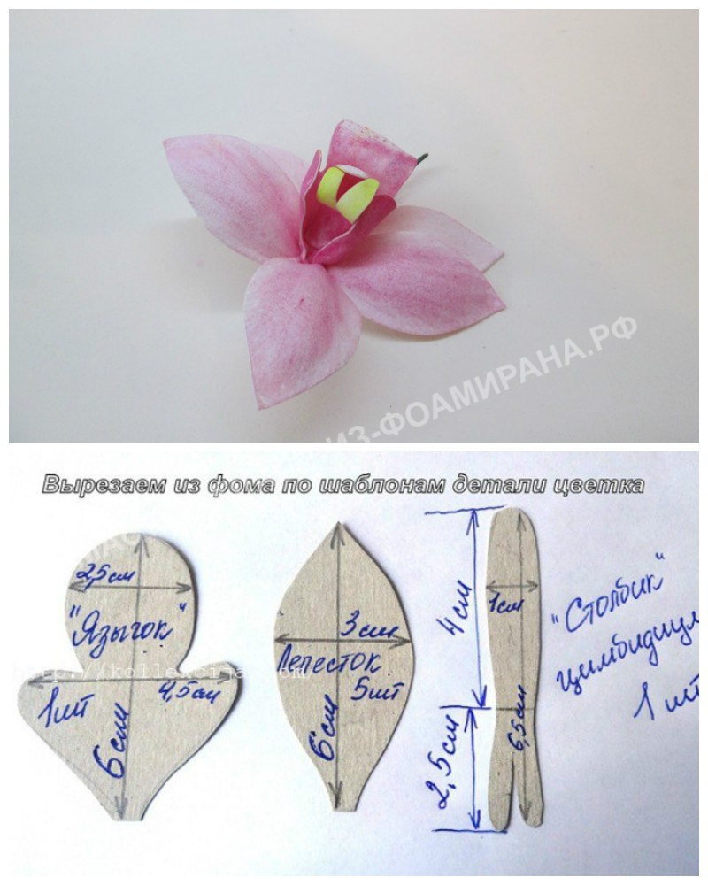 Цветок и выкройка орхидеи цимбидиум