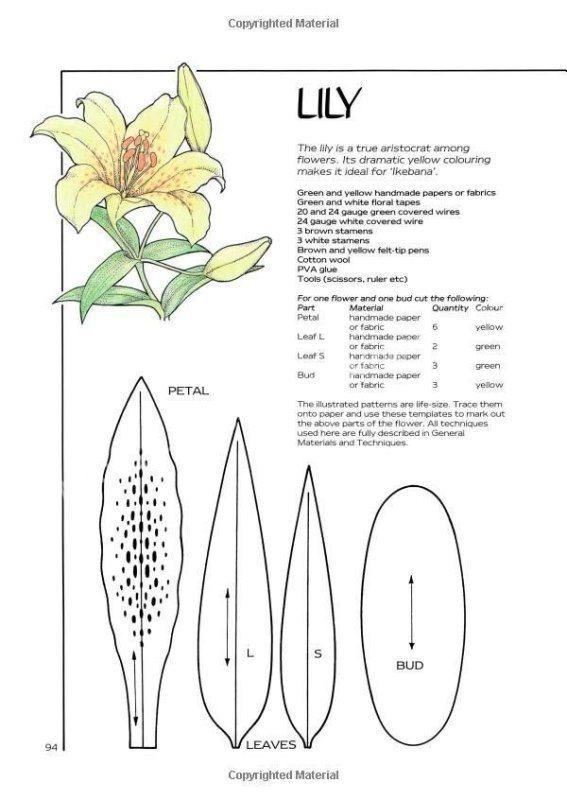 выкройка лилии