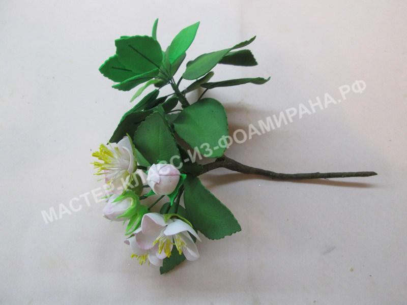 Мастер-класс яблоневый цвет из фоамирана, фото
