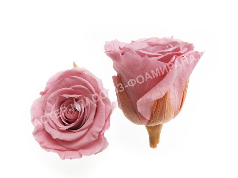 Выкройки розы из фоамирана