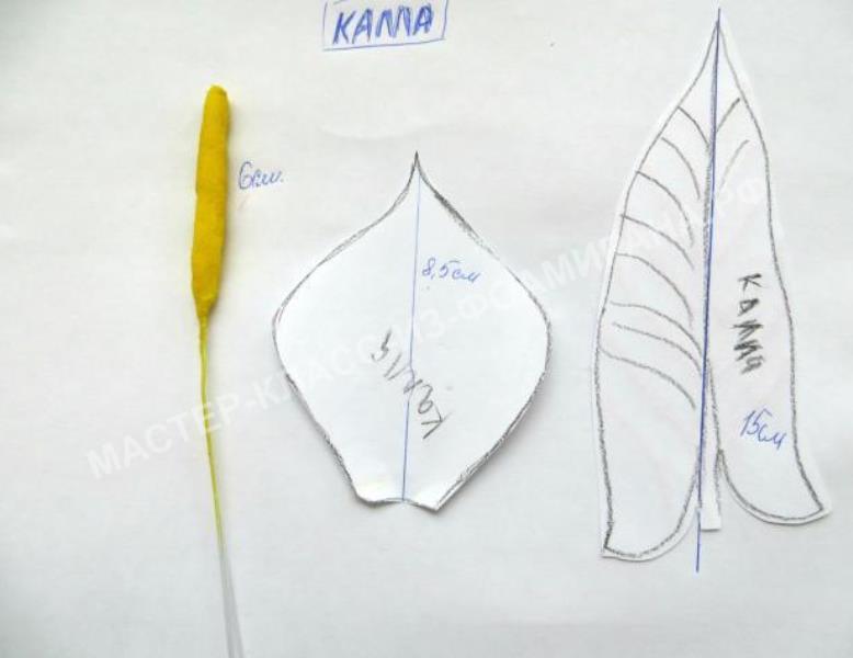 выкройка цветка и листка каллы