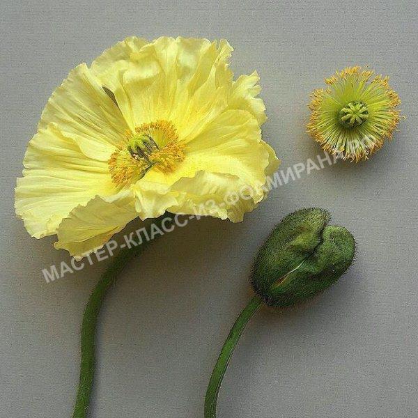 выкройка живого цветка