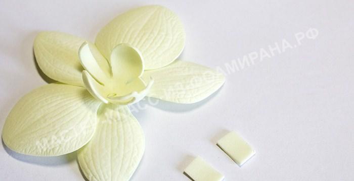 tsveti_012 Мастер класс цветы из фоамирана