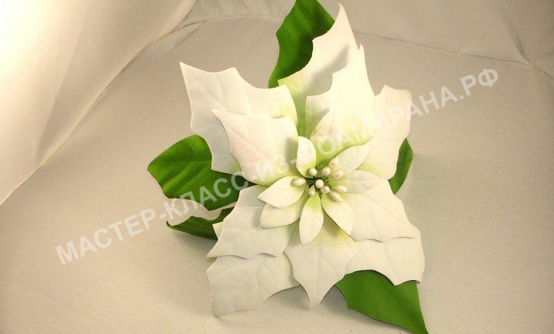 Зимние цветы из фоамирана