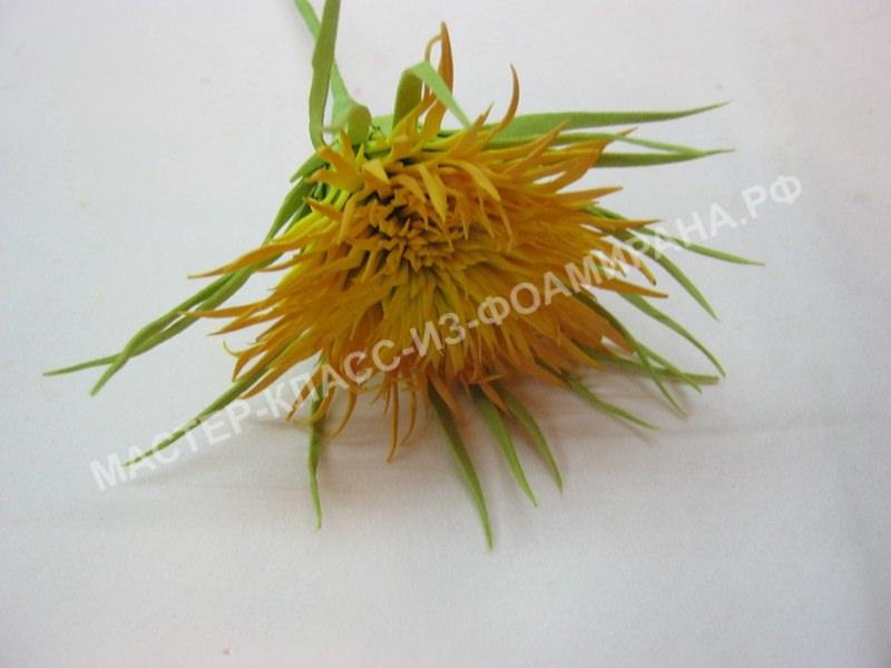 мастер-класс игольчатая хризантема