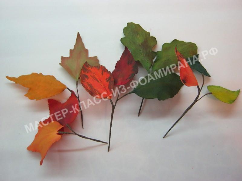 сборка веточек осенних листьев