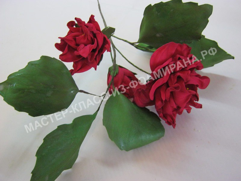 мастер-класс розан китайский из фоамирана