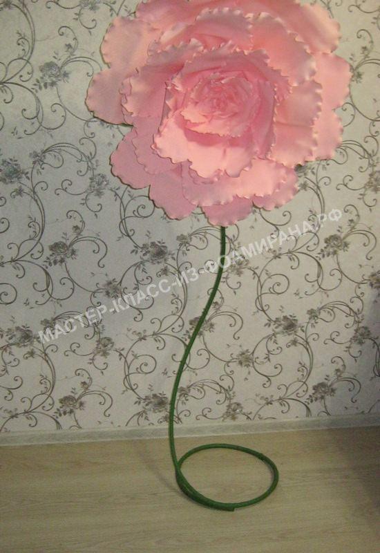 мастер-класс ростовая гигантская чайная роза