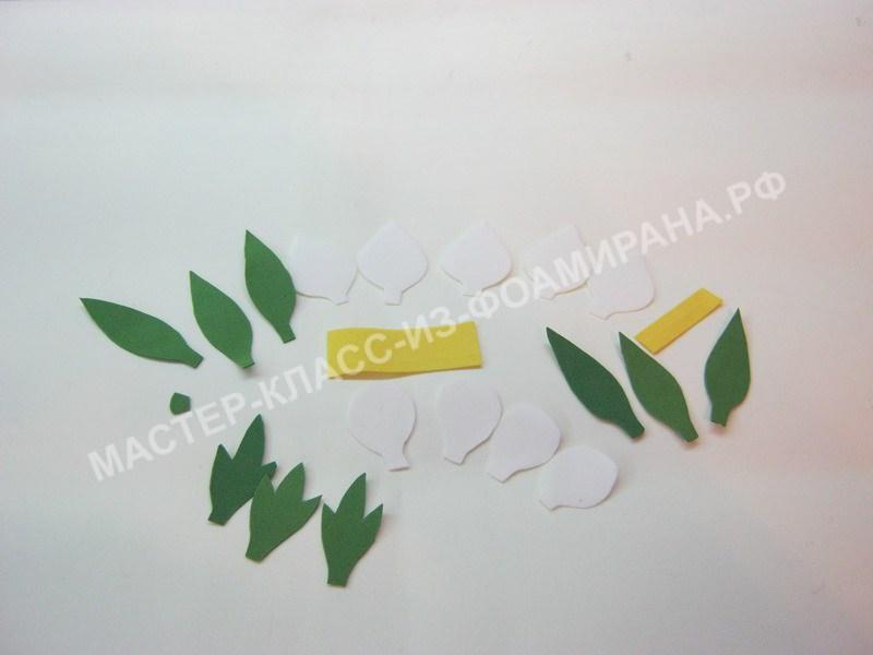 заготовки для создания цветов и бутонов Морозника