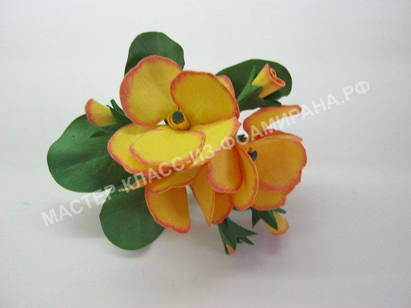 мастер-класс первоцвет цветы из фоамирана,пошаговое фото.